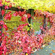 Autumn Decoration Art Print