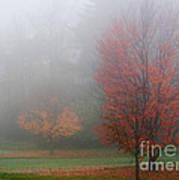 Autumn Fog Art Print