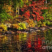 Autumn Forest And River Landscape Art Print