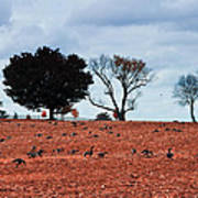 Autumn Geese Art Print by Bill Cannon