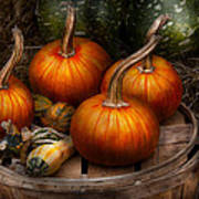 Autumn - Gourd - Pumpkins And Some Other Things  Art Print