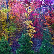 Autumn In Virginia Art Print by Nabila Khanam