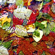 Autumn In Water Art Print