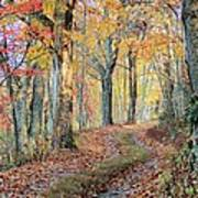 Autumn Lane Art Print by Heavens View Photography