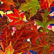 Autumn Leaves Collage Art Print