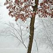 Autumn Leaves In Winter Snow Storm Art Print