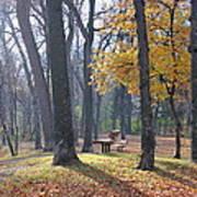 Autumn Morning Munson Park  Art Print