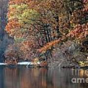 Autumn Pond Reflections Art Print
