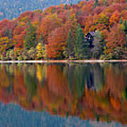 Autumn Reflections On Lake Bohinj In Slovenia Art Print
