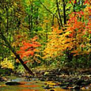 Autumn Reflects Art Print
