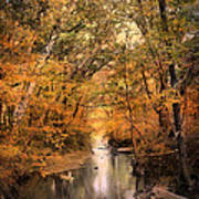 Autumn Riches 2 Art Print by Jai Johnson