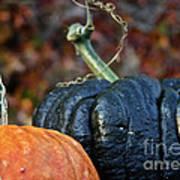 Autumn Riches Art Print
