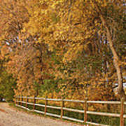 Autumn  Road To The Ranch Art Print