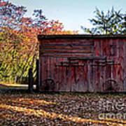 Autumn Shed Art Print
