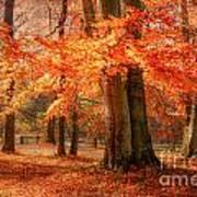 autumn skirt I Art Print