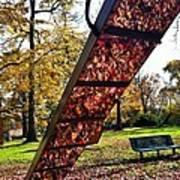Autumn Slide Art Print