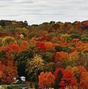 Autumn Spectacular Art Print