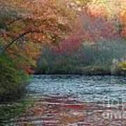 Autumn Splendor 1 Art Print
