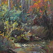Autumn Stream Art Print by Pamela Pretty