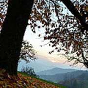 Autumn View Art Print by Bruno Santoro