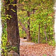 Autumn Walk - Impressions Art Print
