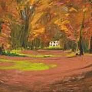 Autumn Woods 3 Art Print