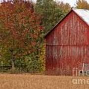 Autumnal Barn Art Print