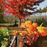 Autumns Colorful Harvest  Art Print