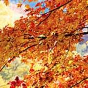Autumns Gold Great Smoky Mountains Art Print by Rich Franco