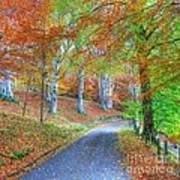 Autumns Way Vert Art Print by John Kelly