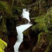 Avalanche Gorge I Art Print