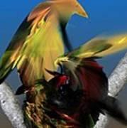 Avian Dreams Series 1-1311 Art Print