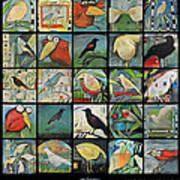 Aviary Poster Art Print