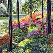 Azalea Forest Grove Art Print