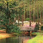 Azaleas And Footbridge Art Print