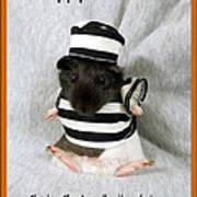 Baby Guinea Pig Trick Or Treat Art Print