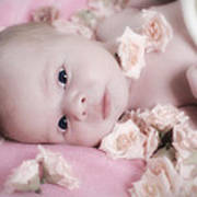 Baby In Bed Of Roses Art Print