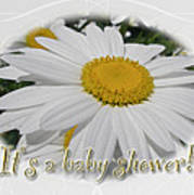 Baby Shower Invitation - Ox Eye Daisy Art Print