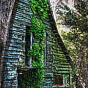 Back To Nature - Crumbling Barn Art Print