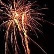 Backyard Fireworks 2012 5 Art Print