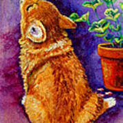 Bad Puppy In Mom's Geranium Art Print