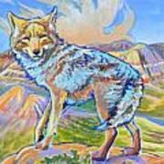 Badland Coyote Art Print