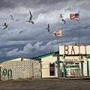 Bait Shop By Aransas Pass In Texas Art Print