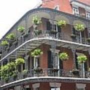 Balcony In New Orleans Art Print
