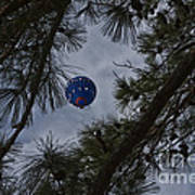 Balloon In The Pines Art Print