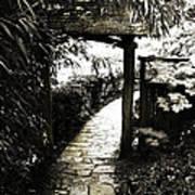 Bamboo Garden - 1 Art Print