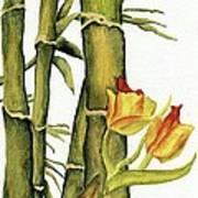 Bamboo Paradise Art Print