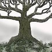 Bare Branches I Art Print