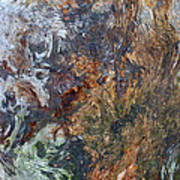 Bark Abstract Art Print