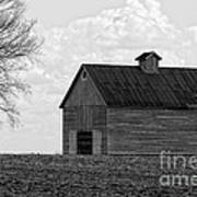 Barn And Tree In Black And White Art Print